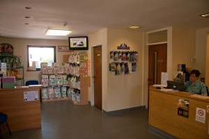 Vale Vets Surgery Hours